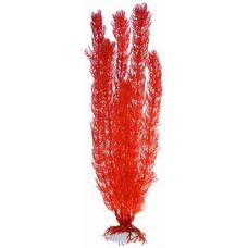 Растение пл. SOBO 10см Plant016/10 роголистник коралловый