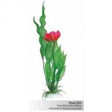 Растение пл. SOBO 10см Plant023/10 апоногетон мадаг.с цветком