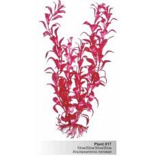 Растение пл. SOBO 10см Plant017/10 альтернателла лиловая