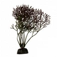 Растение пл. SOBO 10см Plant030/10 горгонария черная