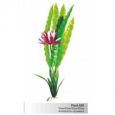 Растение пл. SOBO 10см Plant029/10 апоногетон курчавый зел