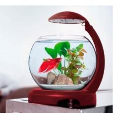Аквариум Tetra Caskade Globe 6.8L круглый Бордовый